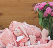 różowi króliki Zdjęcie Stock