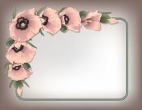 Różowi maczki kwiecista rama, wektor Fotografia Royalty Free