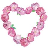 Różowi peones i róża kształta kierowa rama ilustracja wektor