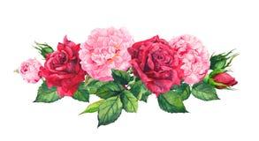Różowi peonia kwiaty i czerwone róże akwarela royalty ilustracja