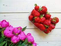 różowi peonia kwiaty i truskawkowe jagody na białym tle Zdjęcia Royalty Free