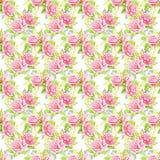 Różowi róża bukiety beak dekoracyjnego latającego ilustracyjnego wizerunek swój papierowa kawałka dymówki akwarela Bezszwowy dese Zdjęcia Royalty Free