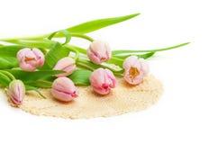 Różowi tulipany, doily Zdjęcia Royalty Free