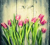 Różowi tulipany na starym drewnianym tle Obrazy Stock