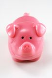 różowy świń Obrazy Royalty Free
