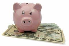Świniowaty bank na dolarach odizolowywających na białym tle Zdjęcia Royalty Free