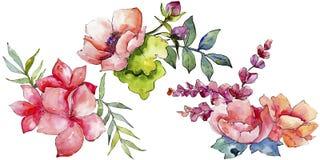 Różowy bukieta wildflower Kwiecisty botaniczny kwiat Dziki wiosna liścia wildflower odizolowywający Zdjęcia Royalty Free