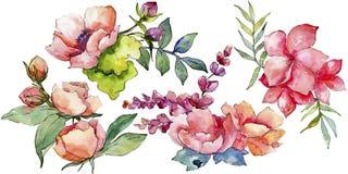 Różowy bukieta wildflower Kwiecisty botaniczny kwiat Dziki wiosna liścia wildflower odizolowywający Obraz Stock