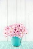 Różowy czereśniowego okwitnięcia kwiatu bukiet Fotografia Stock