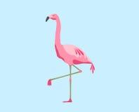 Różowy flaminga ptak nad błękitnym tłem Obrazy Royalty Free