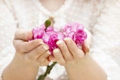Różowy goździk w pięknych rękach zdjęcie royalty free
