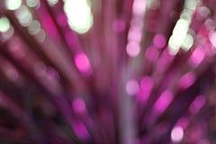 Różowy i purpurowy bokeh zaświeca tło, kolorowa błyskotliwość defocused zdjęcia stock