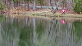 Różowy krzesło obok jeziora z pięknymi odbiciami na wodzie obraz stock