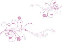 różowy kwiat ilustracja wektor