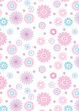 Różowy kwiatu wzór na białym tle. Zdjęcia Stock