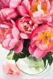 różowy kwieciste tło Zdjęcie Stock