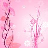 Różowy Kwiecisty Wskazuje kwiatu kwiatu I tła Zdjęcia Stock