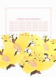 Różowy kwiecisty wzór z jaśminem dla karty również zwrócić corel ilustracji wektora Obraz Stock