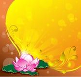 Różowy lotosowy wektorowy złocisty tło wektor Zdjęcia Royalty Free