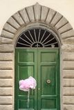 Różowy nowonarodzony dziewczyna faborek, Lucca, Tuscany, Włochy zdjęcia royalty free
