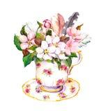 Różowy okwitnięcie kwitnie, roczników piórka w herbacianej filiżance akwarela royalty ilustracja