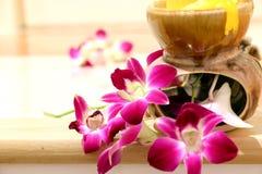 Różowy orchidei i światła tło Zdjęcia Royalty Free