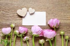Różowy perski jaskier kwitnie ranunculus na drewnie obraz royalty free