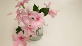 Różowy poślubnik Kwitnie w Szklanej wazie zbiory