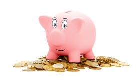 Różowy prosiątko bank odizolowywający na białym tle fotografia royalty free