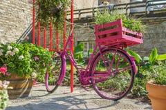 Różowy rocznika bicykl z kwiatów garnkami obraz stock