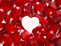 Różowy serce papier na czerwieni róży płatkach Fotografia Stock