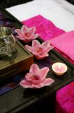 różowy spa piękna Fotografia Royalty Free