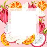 Różowy tło z pitaya i pomarańcze ilustracja wektor