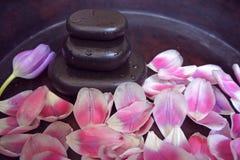 Różowy tulipanowy blackstone woodsink zdroju masaż relaksuje terapię Zdjęcie Royalty Free