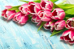 Różowy tulipanowy bukiet na błękitnym drewnianym tle, kopii przestrzeń fotografia royalty free