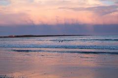 Różowy zmierzch wypełnia wewnątrz burz chmury nad oceanem Obraz Royalty Free