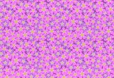 Różowych łąkowych kwiatów wektoru wzoru bezszwowa ilustracja Zdjęcia Stock