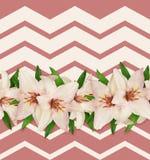 Różowych i białych leluj bezszwowy wzór Obrazy Royalty Free