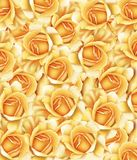 róży kolor żółty ilustracja wektor
