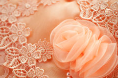 Róży koronki miękka ostrość Obraz Stock