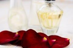 Róży pachnidło i leafes Obraz Stock