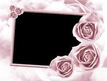 Róży rama obrazy royalty free