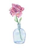 różana akwarela Zdjęcie Stock