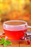Różana modna herbata Zdjęcie Royalty Free