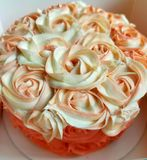 różany korala tort Obraz Stock