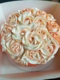 różany korala tort Fotografia Stock