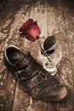 różany rocznik Zdjęcie Royalty Free