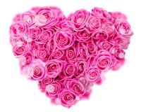 Różany serce Zdjęcie Royalty Free