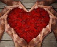 Różany serce 2 Zdjęcie Stock