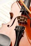 różany skrzypce Obrazy Royalty Free